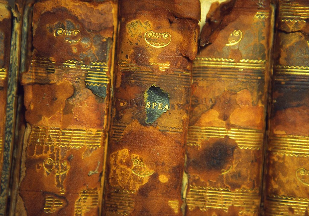 Shakespeare's spines